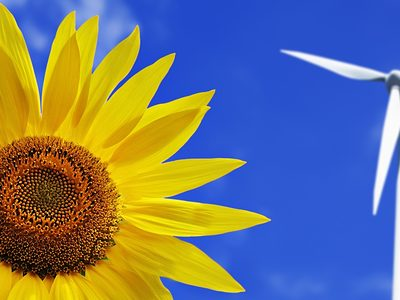 Umwelt Energie Windenergie Sonnenblume
